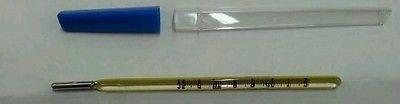 Termometro a mercurio prismatico